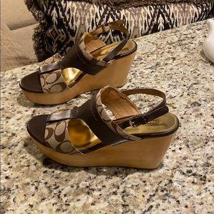 COACH 8.5 Medium khaki/brown sandal